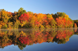 Autumn foliage reflection on lake in rural Pennsylvania