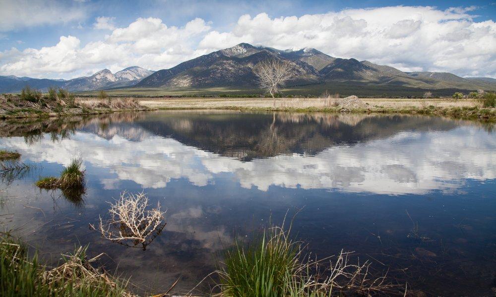 Freshwater -