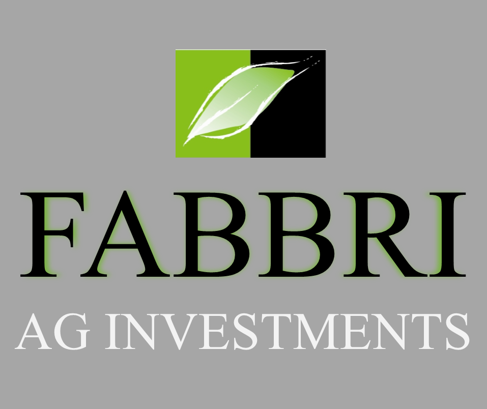 FABBRI AG INVESTMENTS