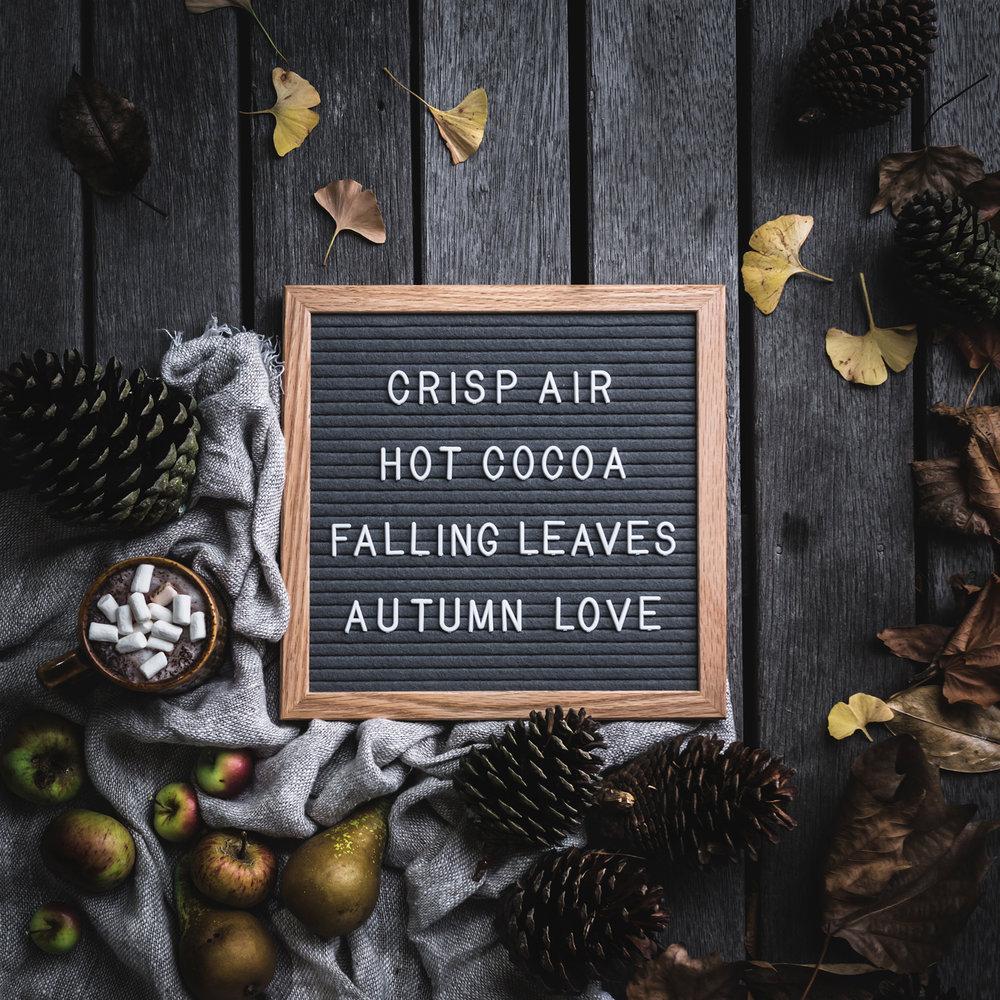 www_seasonal.jpg