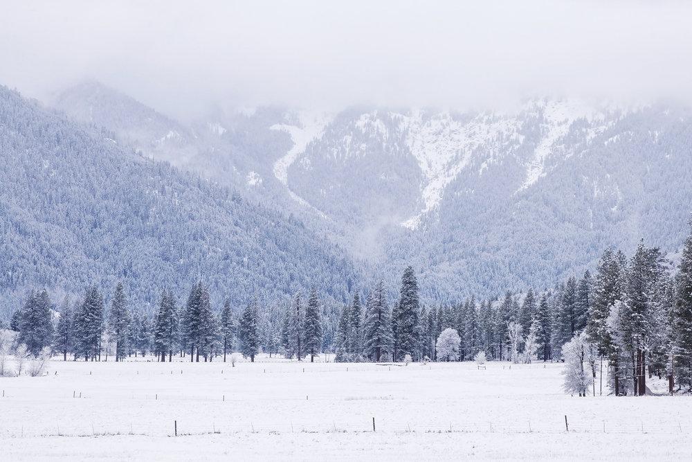 #36. HYDE DHCA-Gen15-233-16 Upper Genesee Valley From Heart K Pasture, WinterS.jpg
