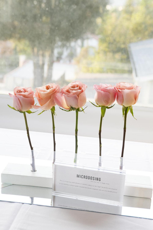 001-hosted by roze volca microdosing.jpg