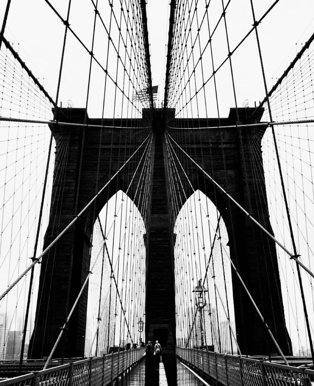 The Brooklyn Bridge was the first steel-wire suspension bridge ever built.