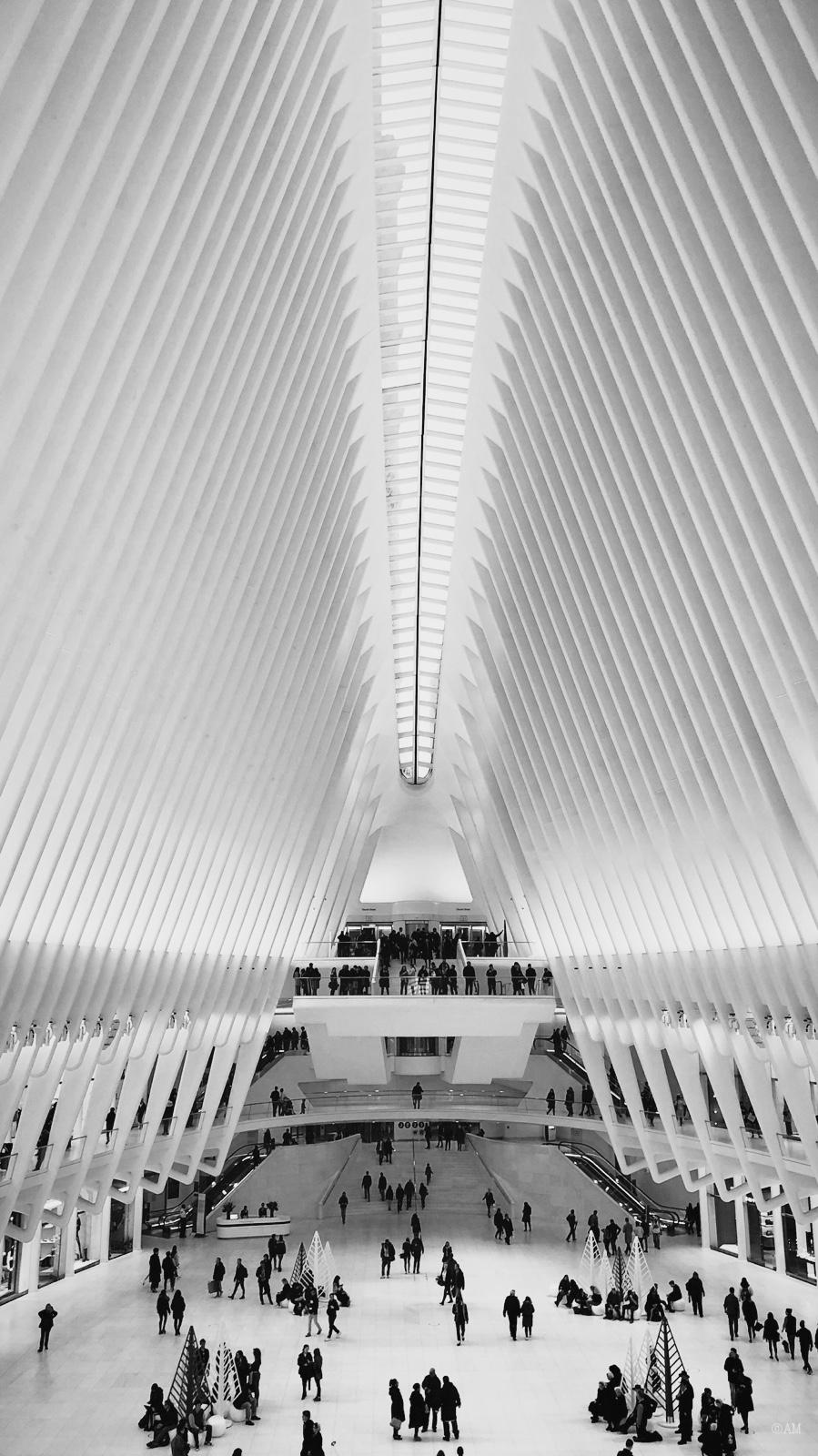 Inside the World Trade Center Transportation Hub.