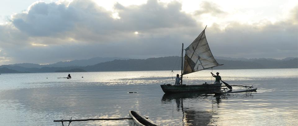 Myskelene, Vanuatu