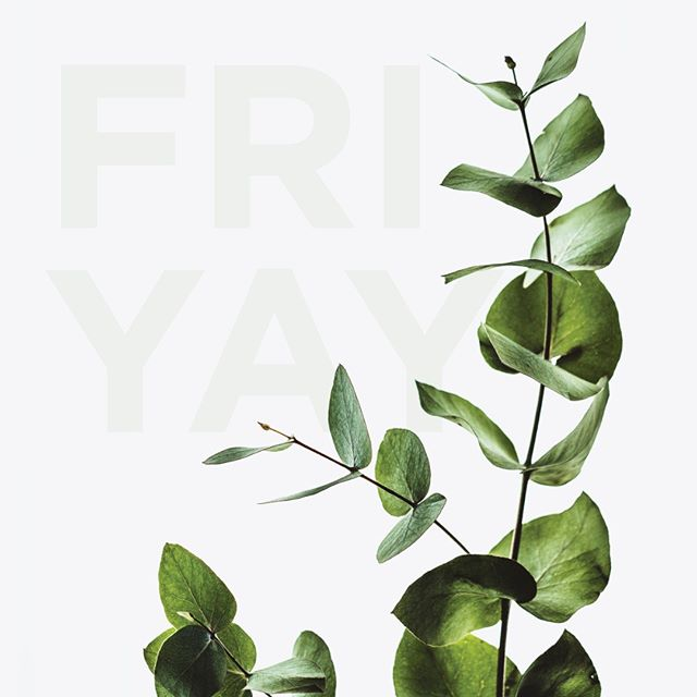 #friyay . . . . #fridayvibes #green#design #instadesign #followus #graphicdesign #graphicdesignstudio #graphicdesigner #quote #greenery #indoors #indoorplants #colourpalette #inspiration #outdoors