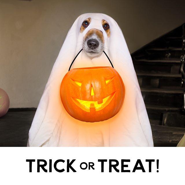 Happy Halloween! #happyhowloween #candy #trickortreat #halloween
