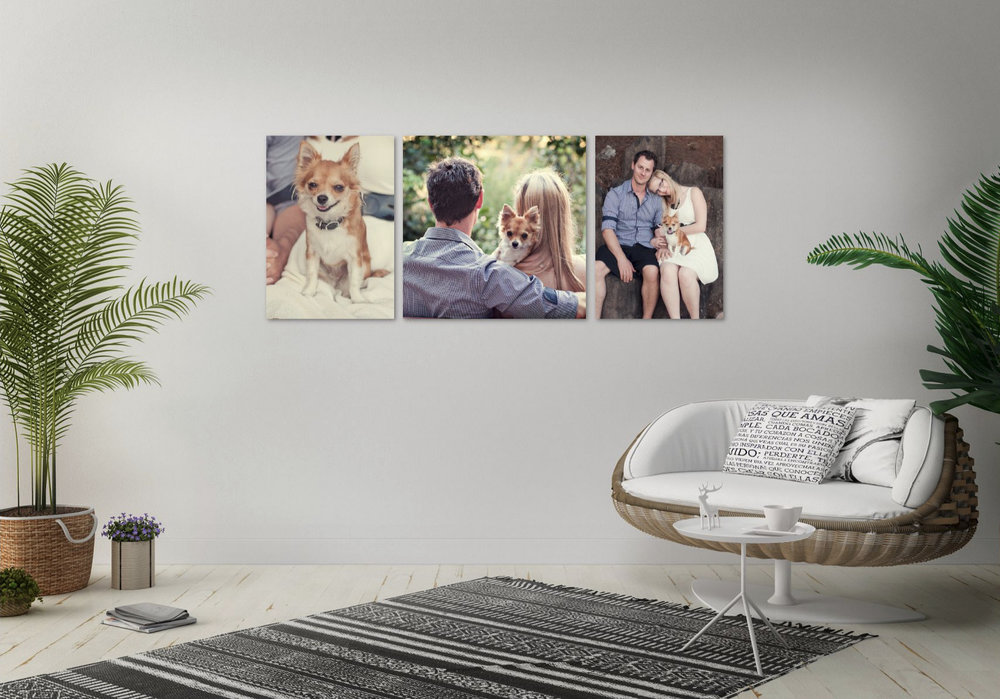 SK Portrait Consult  - Layout - Screen Grab4.jpg