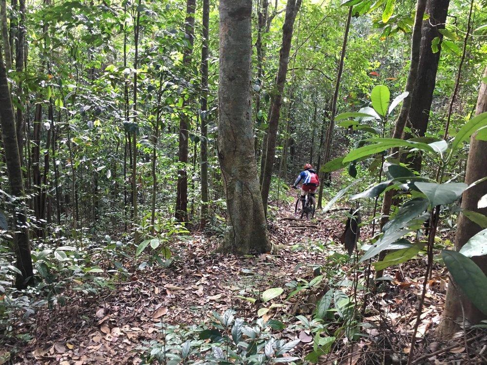 Gurkha trail 2.jpg
