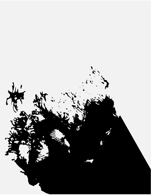 project2-08.jpg
