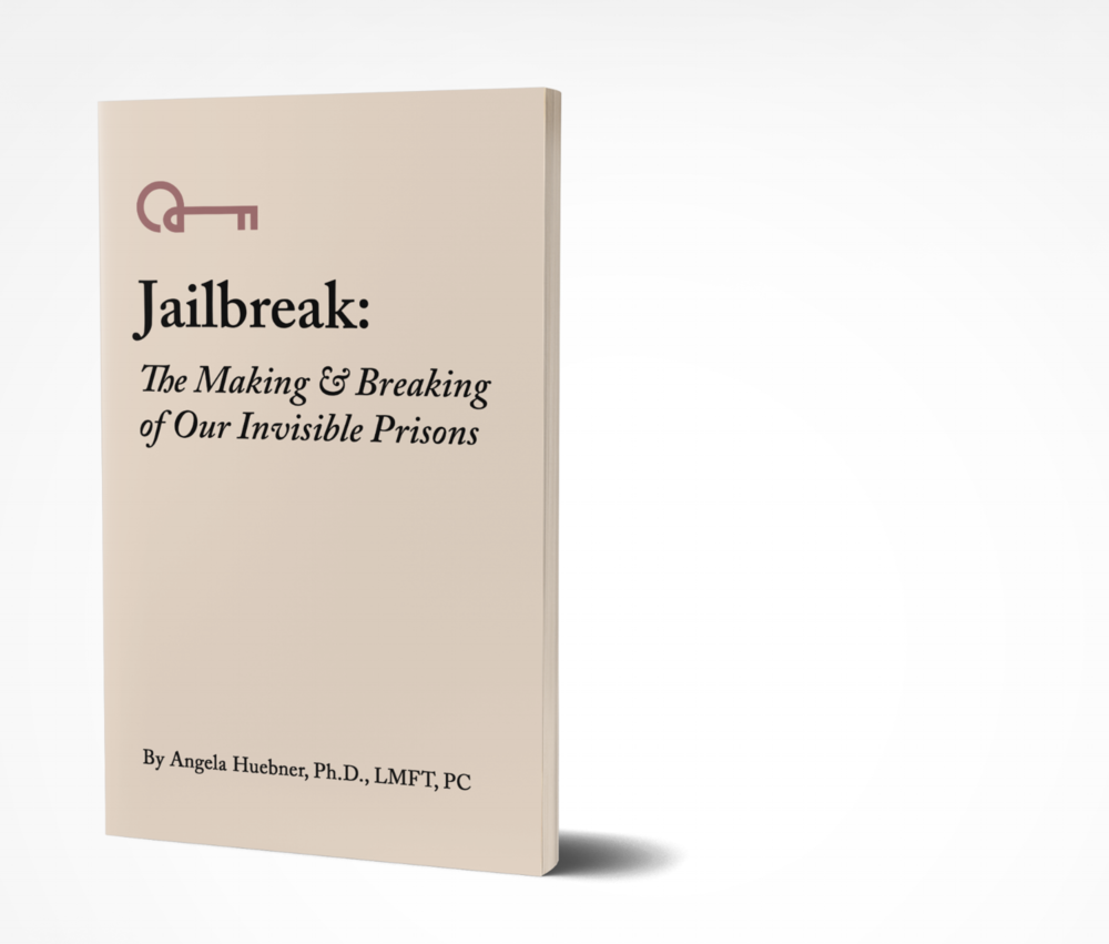 Jailbreak: New Book Coming Soon! - My years as a university professor gave me access to the science. My passion for practical application means I can translate that science into real time guidance for you. I can guide you on your journey to choosing the life you want. I do this by helping you recognize how you got stuck. I help you understand how your brain keeps you imprisoned.  I give you the tools you need to orchestrate a proper jailbreak. I teach you how to stay out.