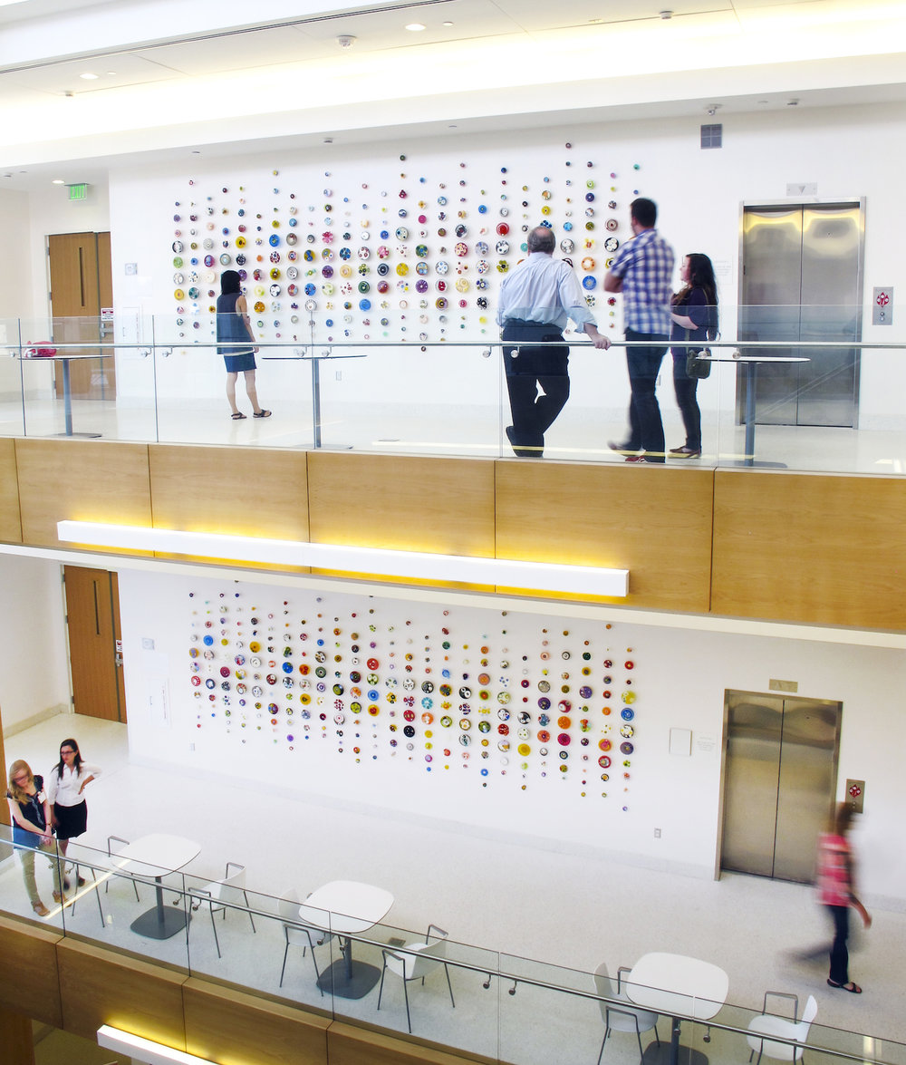 Klari Reis petri dish installation. Atelier Insite Clemson University two of three floor multicolor petri dish installation.  Clemson University Life Sciences Facility.