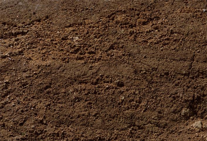 Исследование объектов почвенного происхождения