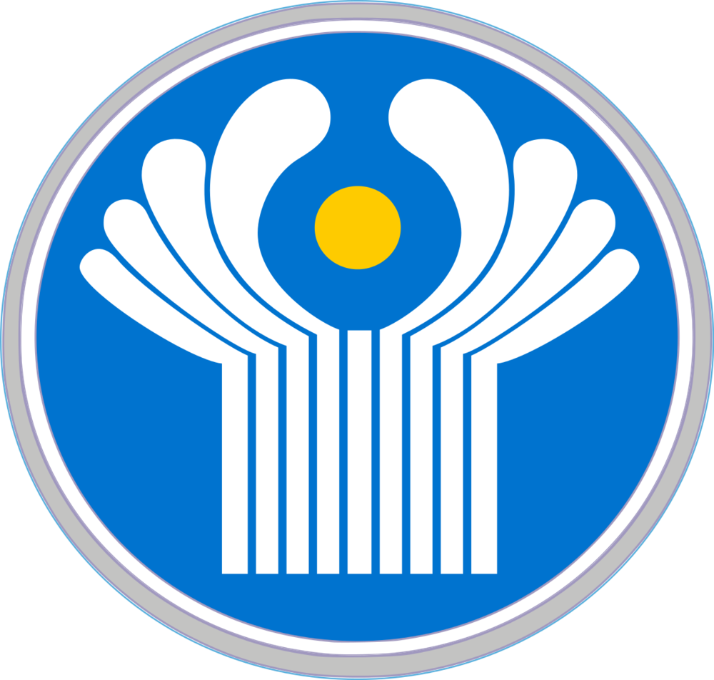 Декларация соответствия ТР ТС — это документальное подтверждение соответствия товара критериям оценки, действующим в рамках Таможенного союза.