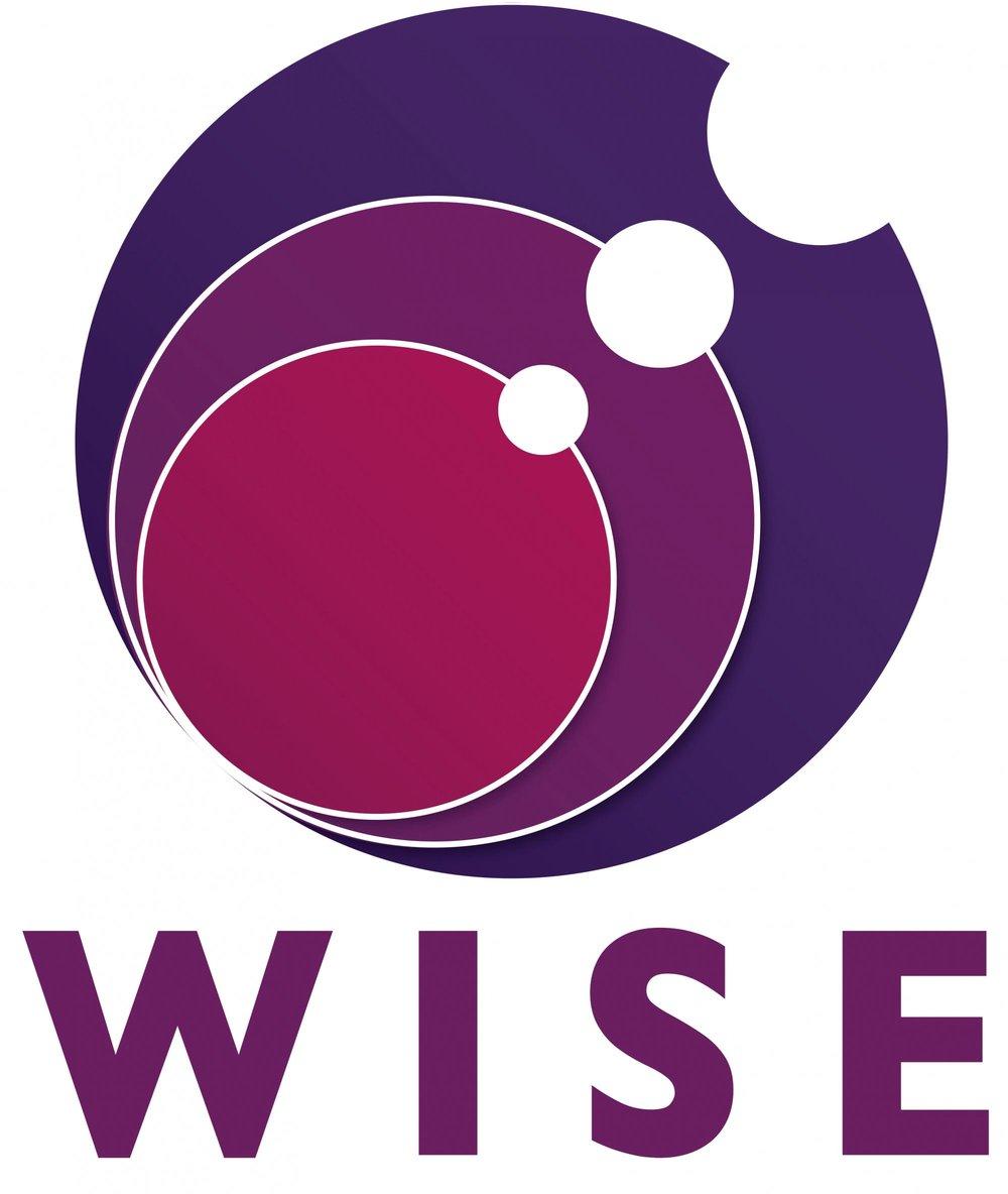 WISE_hi_res_logo.png.jpeg