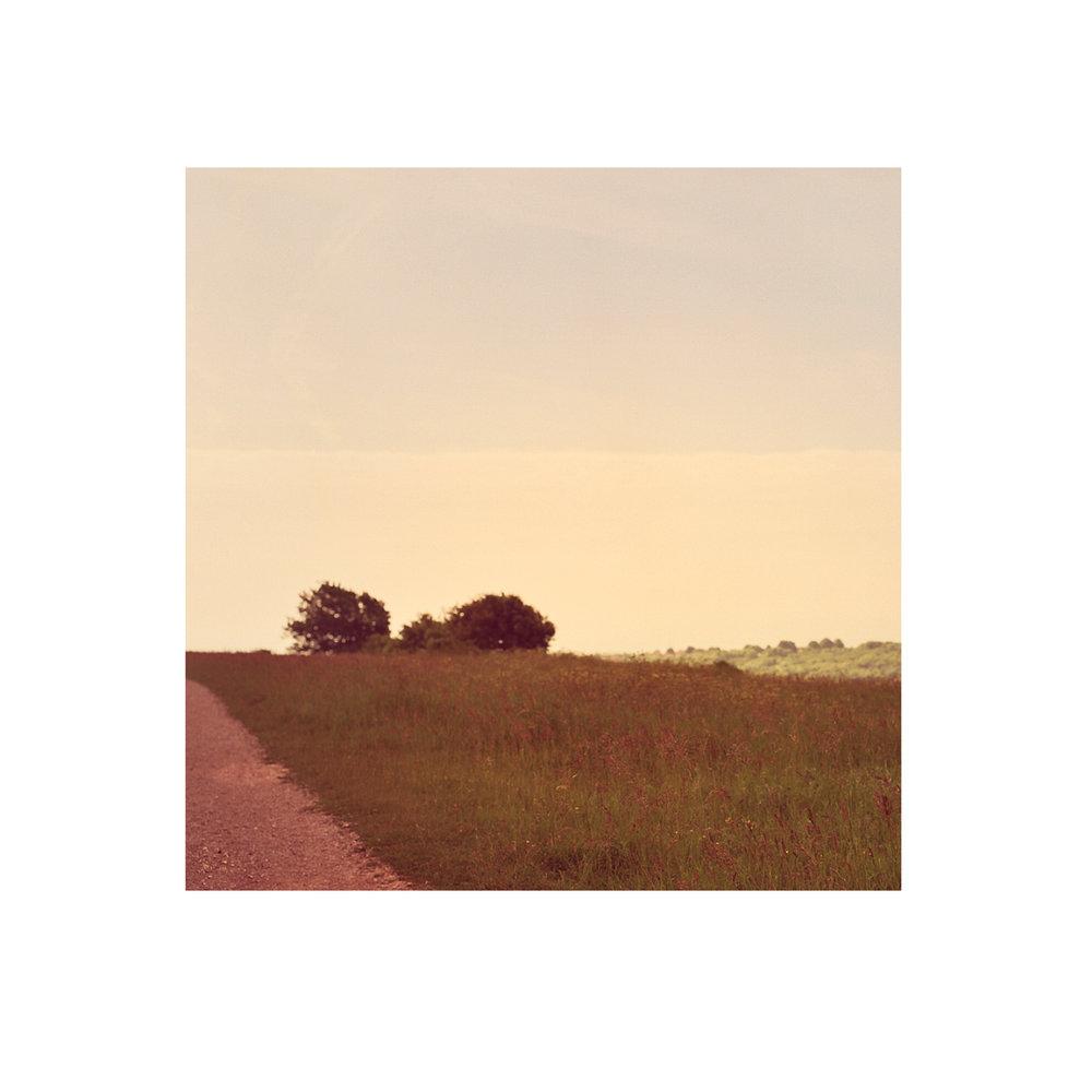 landscape copy 2.jpg