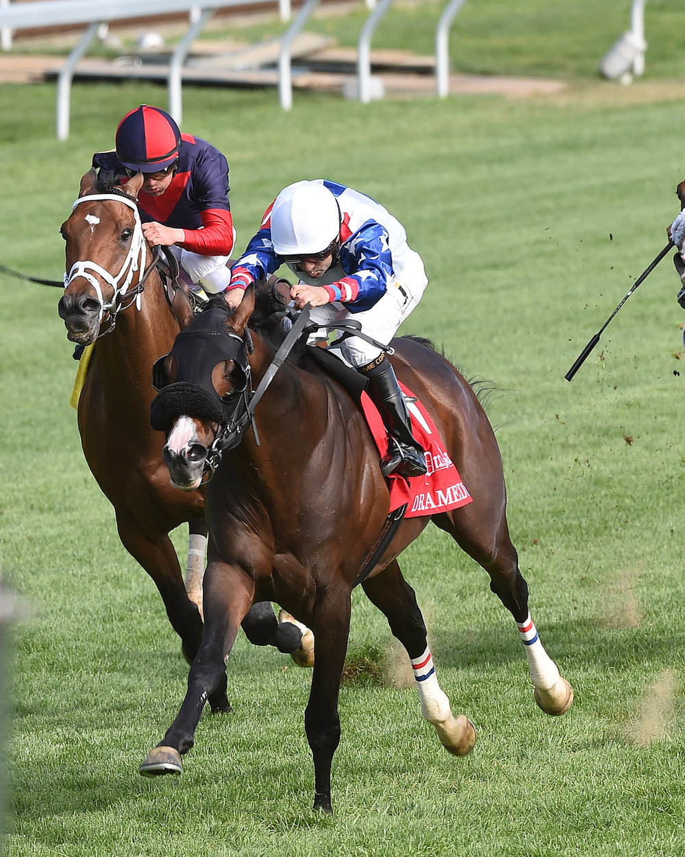 Dramedy victorious in the 2015 G2 Dixiana Elkhorn Stakes