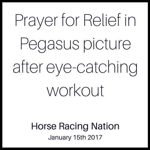Prayer for Relief in Pegasus picture after eye-catching workout