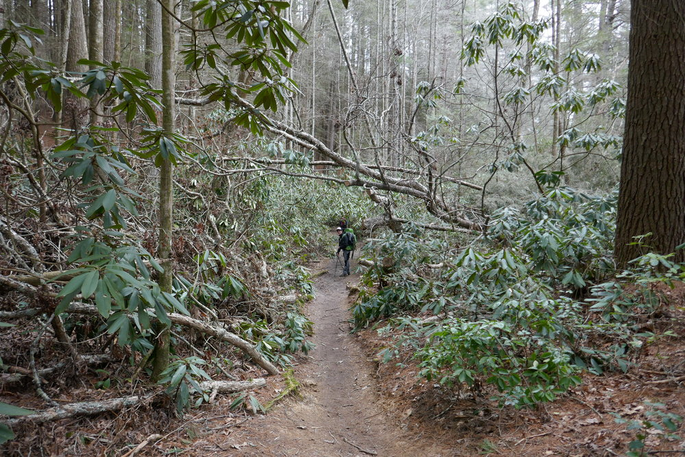 Appalachian Trail Blog 1 - Amicalola Falls to Hiawassee -