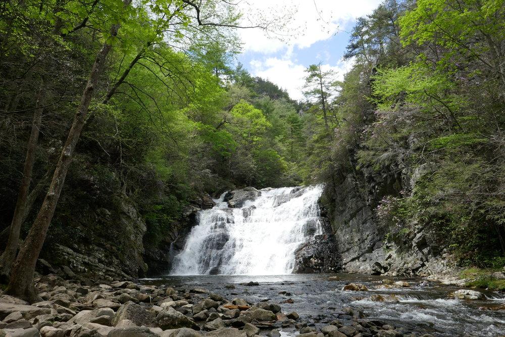 Appalachian Trail - Roan Mountain to Damascas
