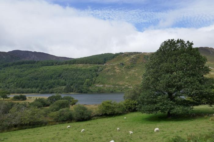 Hiking around Llyn Geirionydd and Llyn Crafnant