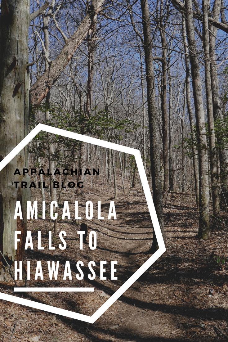 Appalachian Trail: Amicalola Falls to Hiawassee