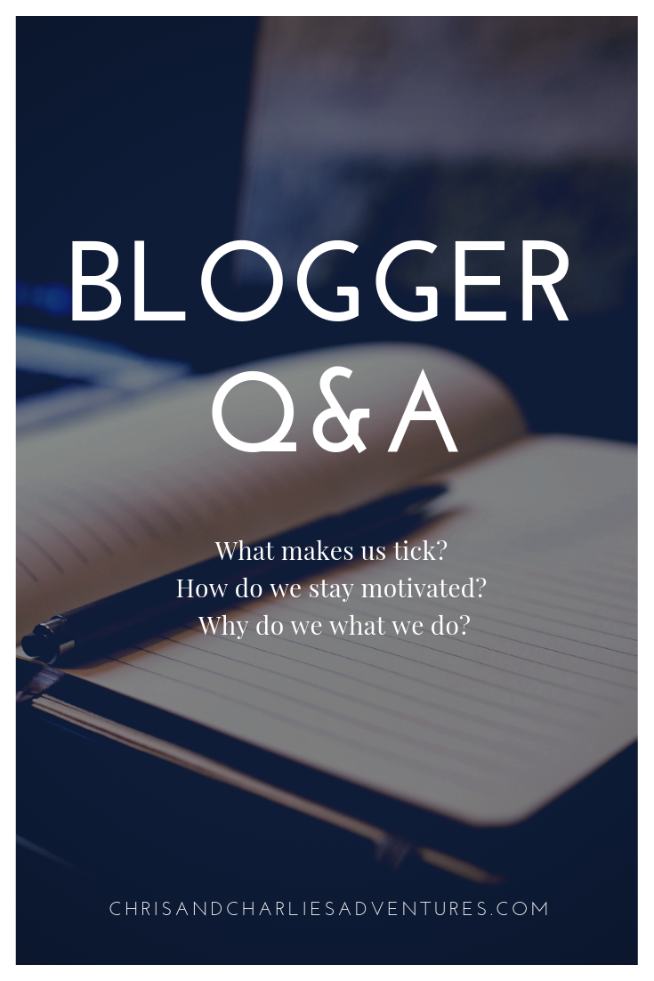 We answer some important questions sent in from other bloggers to share our aspirations, values and interests with our readers.
