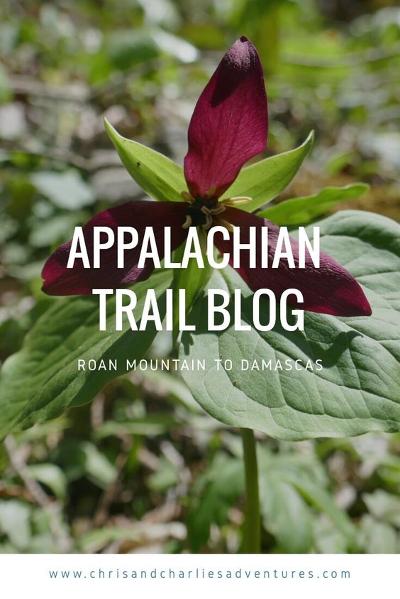 Appalachian Trail blog - Roam Mountain to Damascas