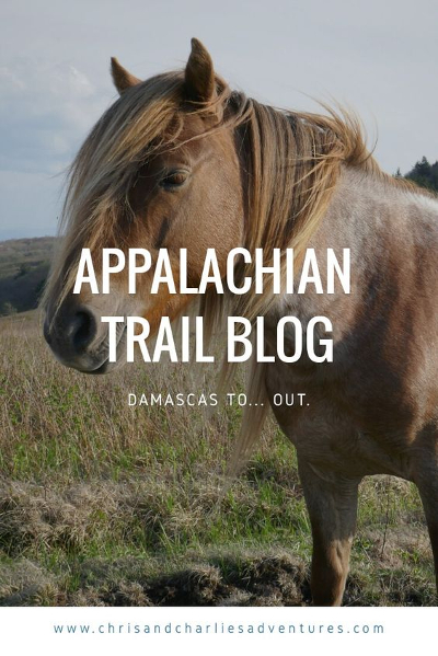 Appalachian Trail blog - Damascas to... out. Why we quit our thru-hike attempt.
