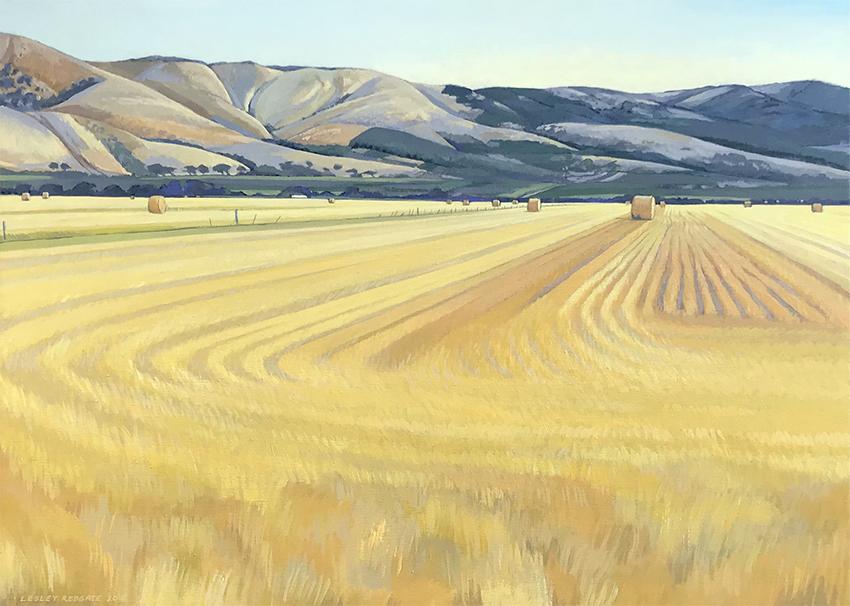 Golden Summer on Malpas by Lesley Redgate