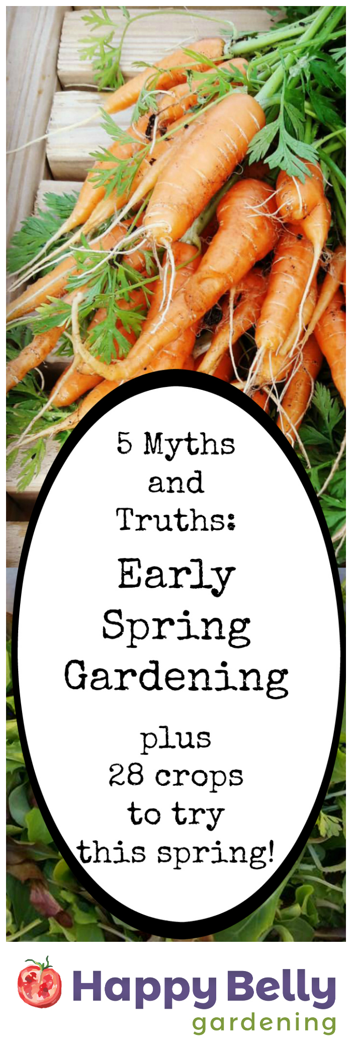 Five Myths and Truths - Early Spring Gardening - plus 28 crops to try this spring.jpg