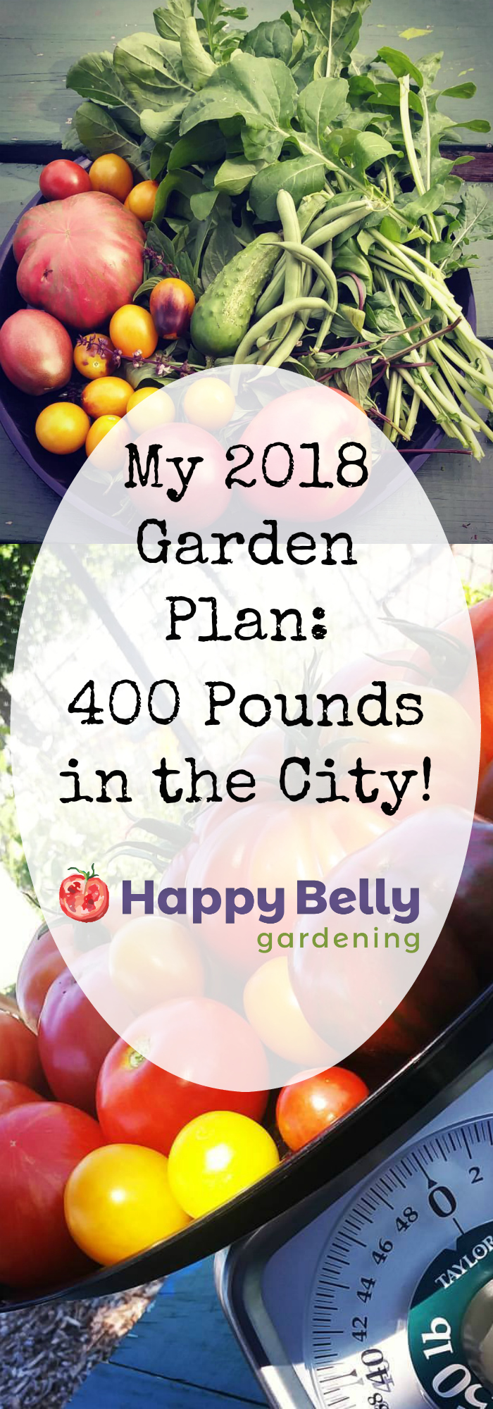 My 2018 Garden Plan - 400 pounds in the city - for pinterest.jpg