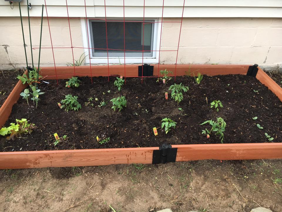 Garden just planted.jpg
