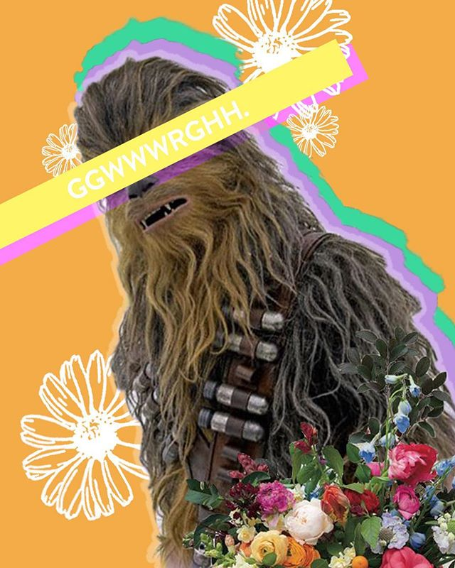 The photoshop edit that Chewie didn't know he needed, but the one that he deserves. • • Happy Thursday, friends. Go watch some Star Wars ⚡️✨