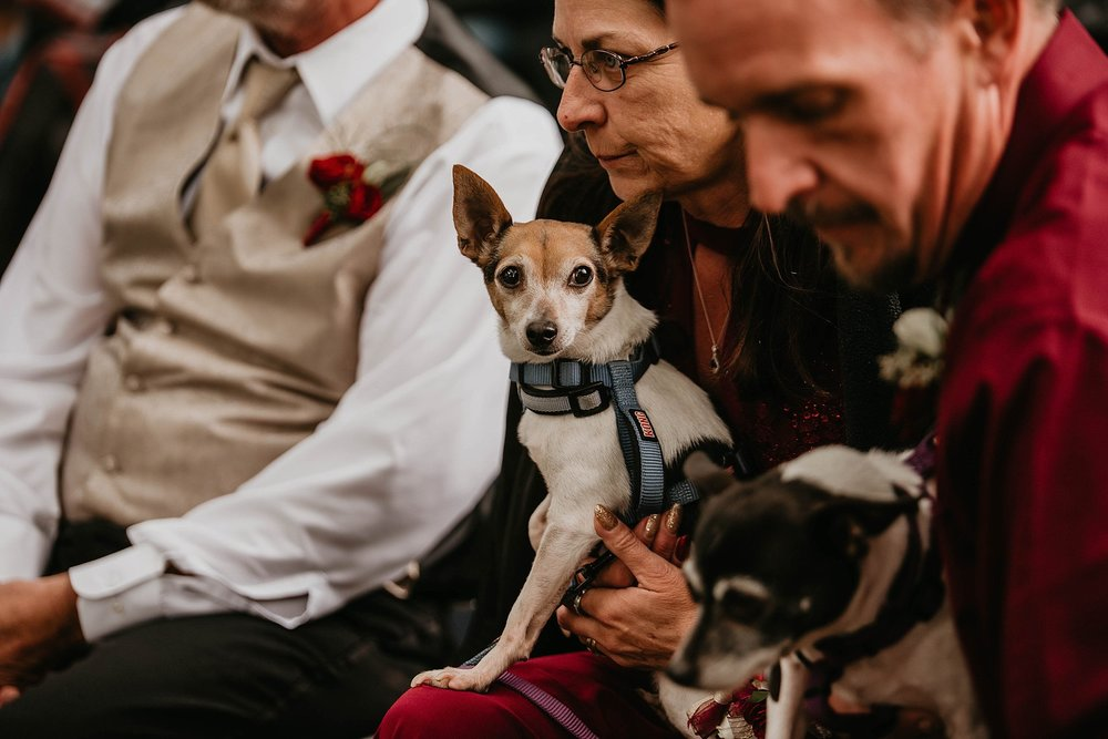 DesMoines-Iowa-Wedding-Photography-Destination-Photographer_0131.jpg