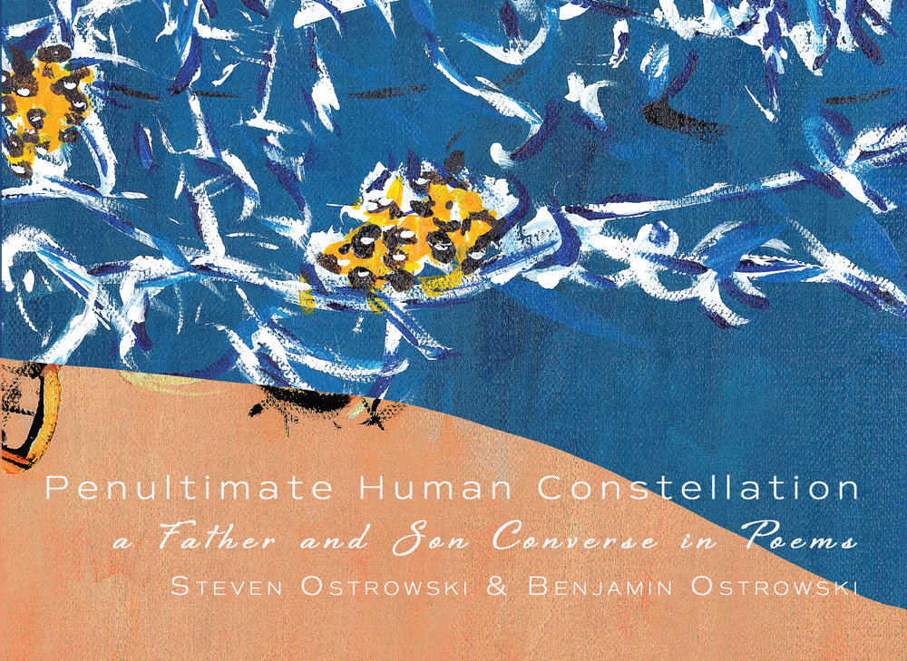 Penultimate Human Constellation poetry by Benjamin and Steven Ostrowski - Release Date August 21st, 2018