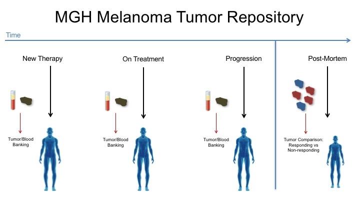 Tumor Banking.jpg