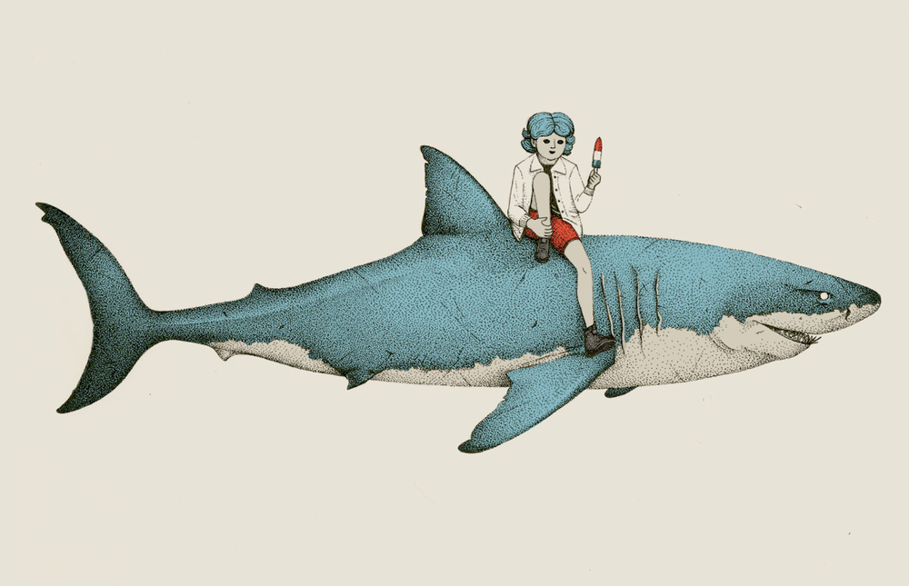 shark-summer-illustration.png