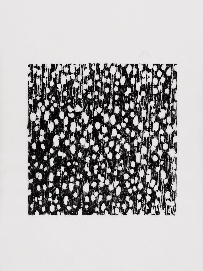Brigitte Engler, wood cell#3