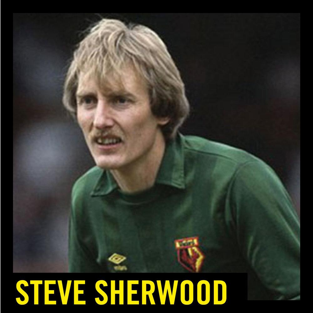Steve Sherwood.jpg