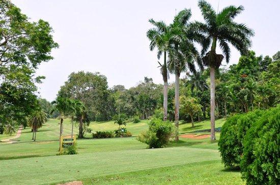 Ochi Golf 2.jpg