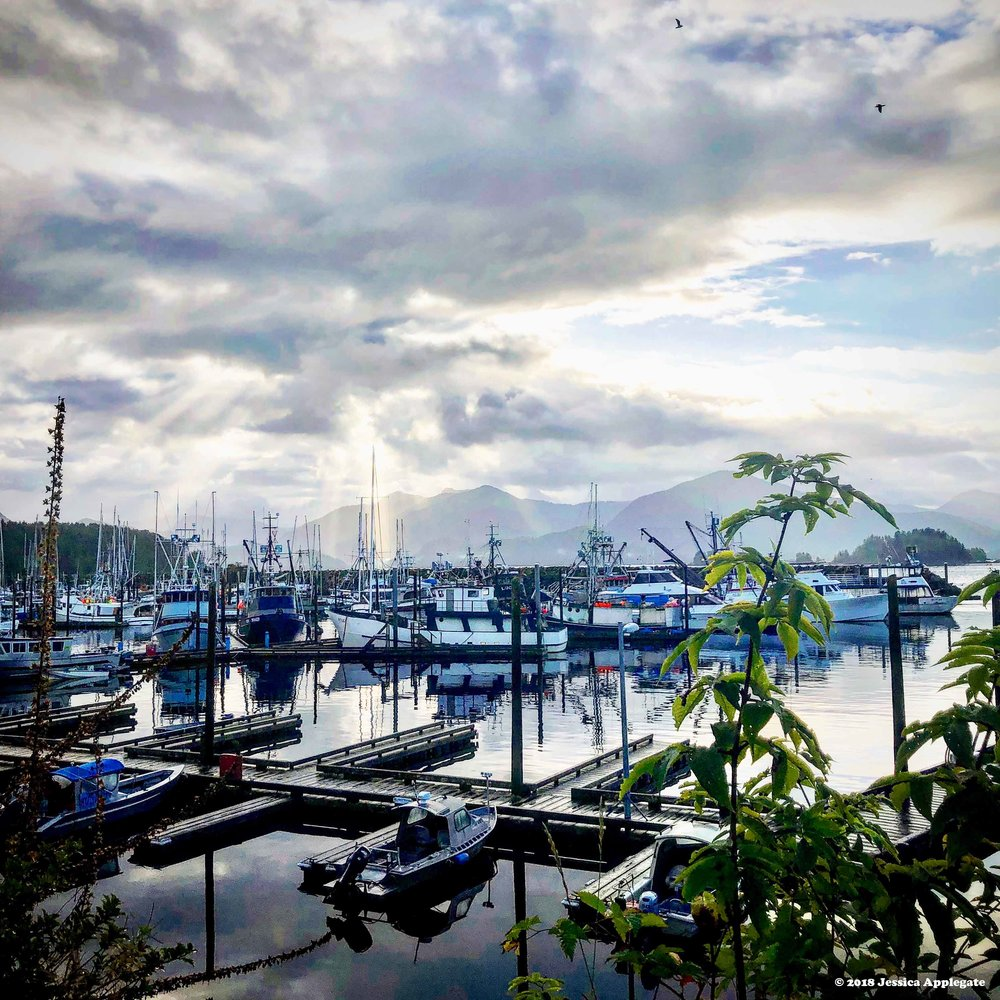 Sitka is located at the heart of Southeast Alaska's tourism and fishing industries.