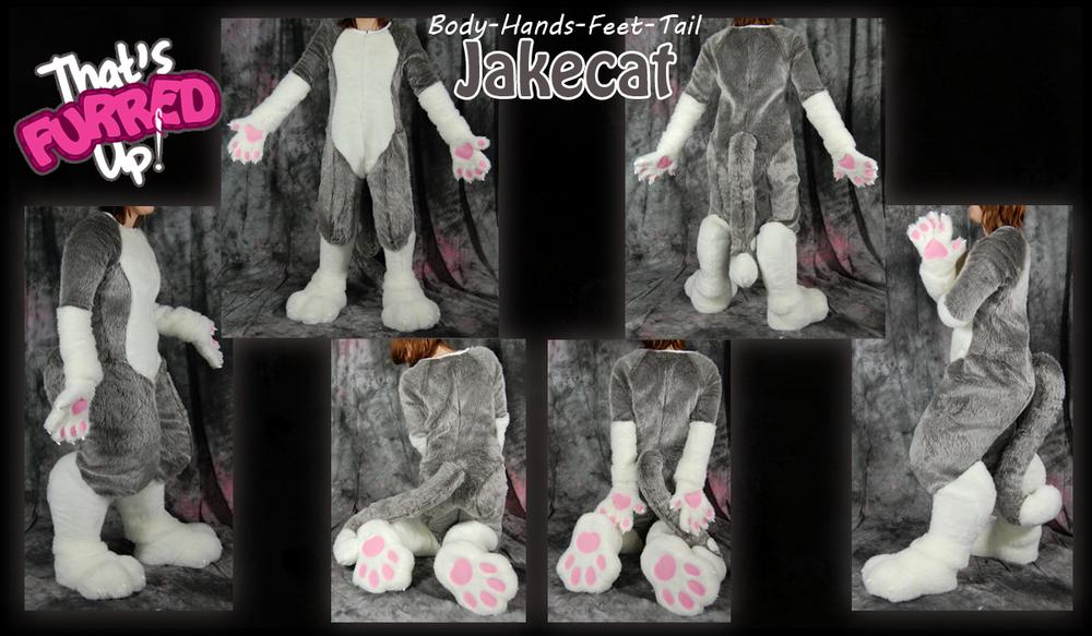 Jakecat.png