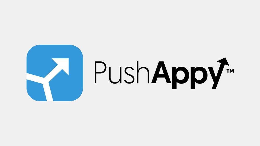 pushappy.jpg