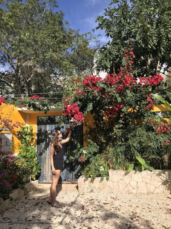 Casa Chacalaca