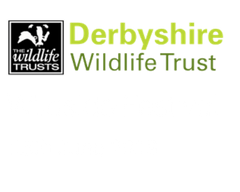 WILDSIDE FESTIVAL