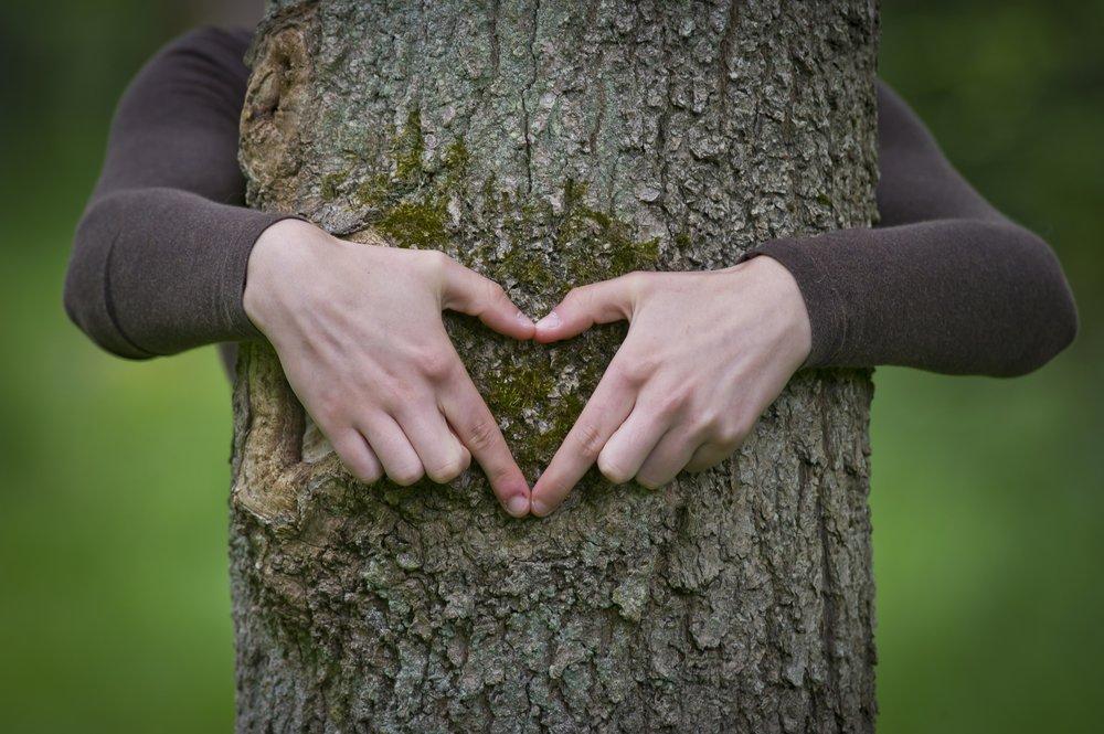 Let nature love you - Matthew Roberts