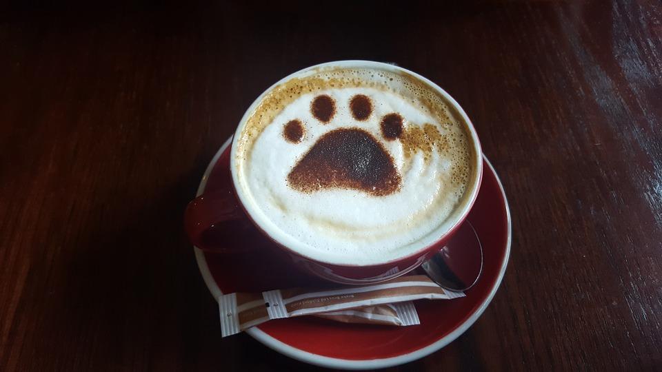 coffee-3124272_960_720.jpg