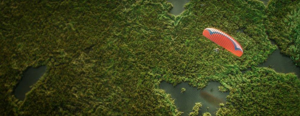 wetlandsfromabove.jpg