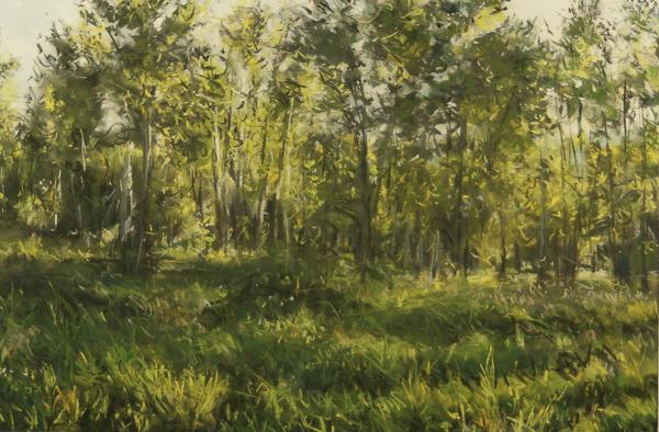 Lee Metcalf , 20x30 pastel by Bobbie McKibbin